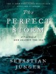 theperfectstorm