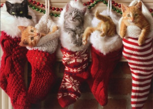 cd9143-kittens-in-christmas-stocking-christmas-card